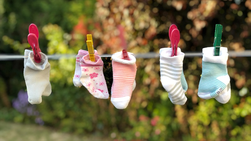 5本指の靴下