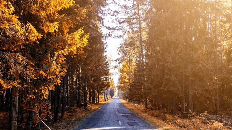 オーバーパンツで調整する秋冬パンツ