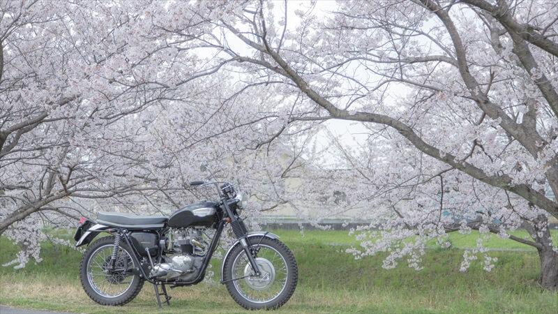大学バイクデビュー